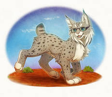 Outback Lynx
