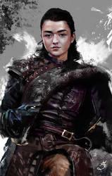 Arya Stark Game Of Thrones by Majdish