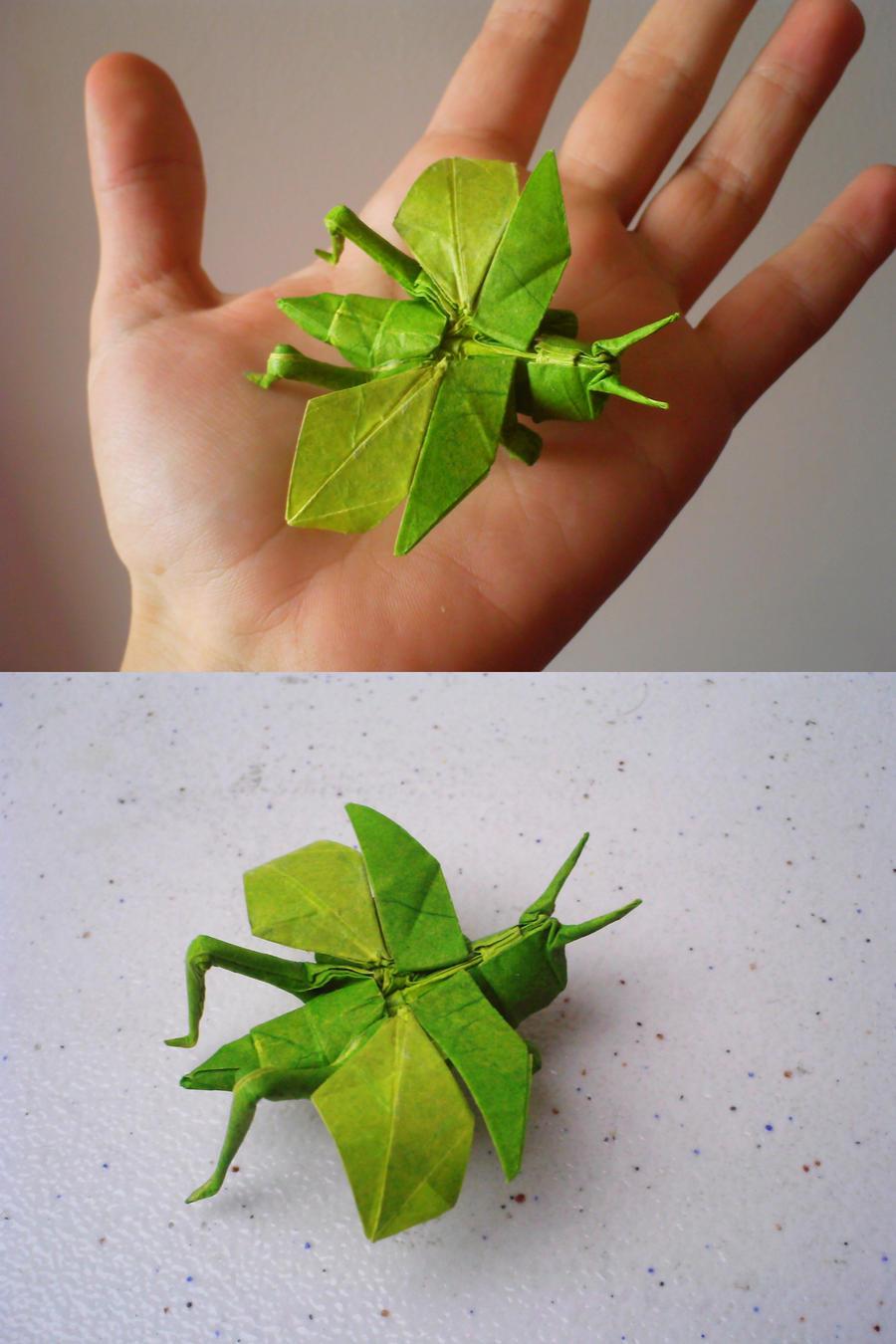 Origami Grasshopper By Kosmu