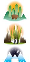 Bears in their Habitats