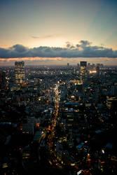Tokyo by Night III