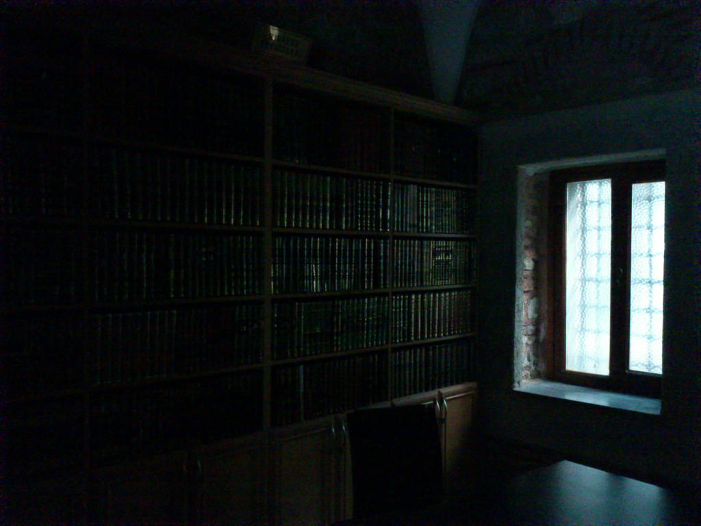 1800's library in Istanbul by sampler