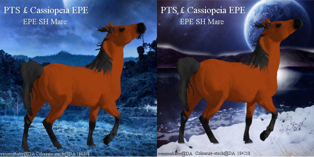 PTS  Cassiopeia EPEArt by Lacrymosa597