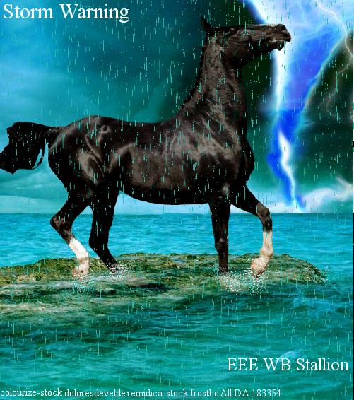 StormWarningArt by Lacrymosa597