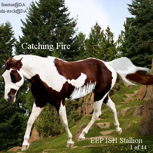 CatchingFire by Lacrymosa597
