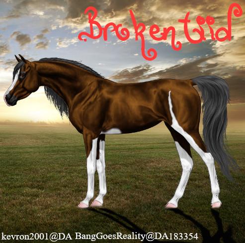 Brokentiid