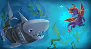 Aquaria sharks