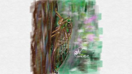 Cicada by coolwanglu
