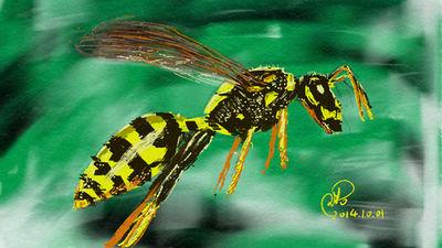 Wasp by coolwanglu
