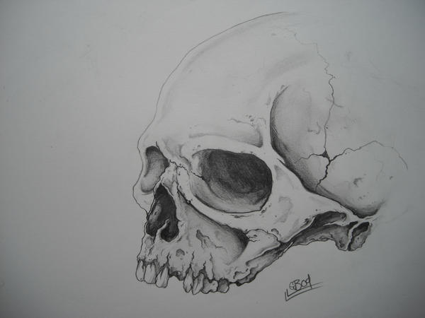 Great Skull Tattoo Designs