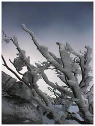 Dark ice by GoOdz