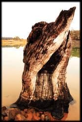 Lake Jindy 3 by GoOdz