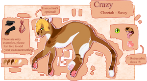 Crazy - 2019 [Fursona reference] by Crazzie-Me