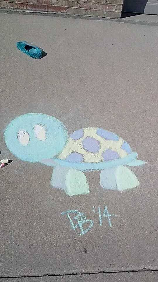 Chalk Turtle by Arlye