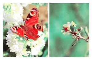 Spring children by Lentilcia