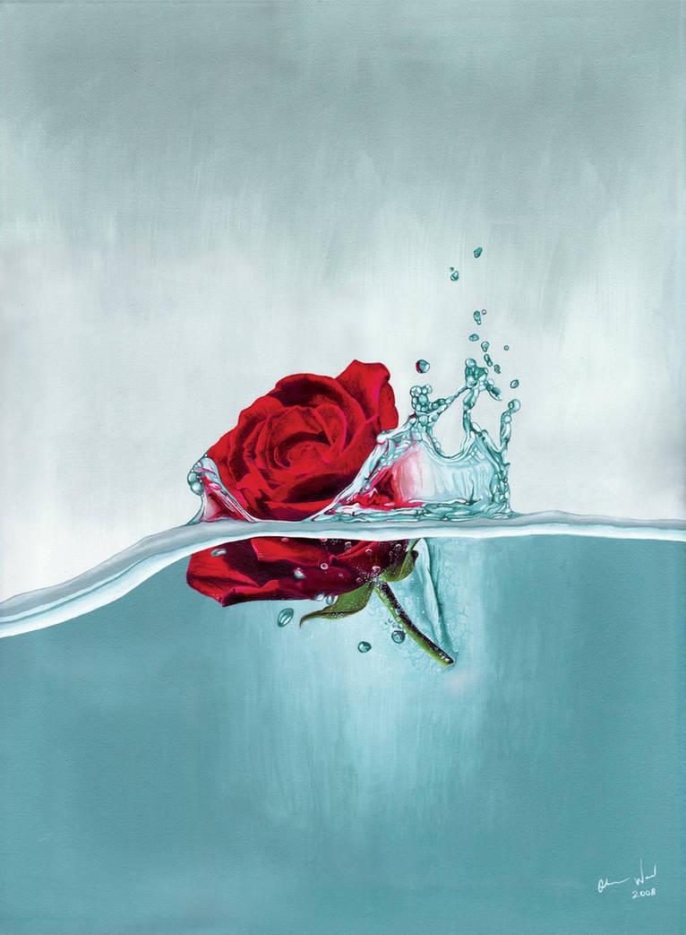 Rose drop by MolefaceNZ