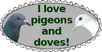 Dove and Pigeon Support Stamp by Pearly-There