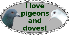 Dove and Pigeon Support Stamp by Crimson-Breloom