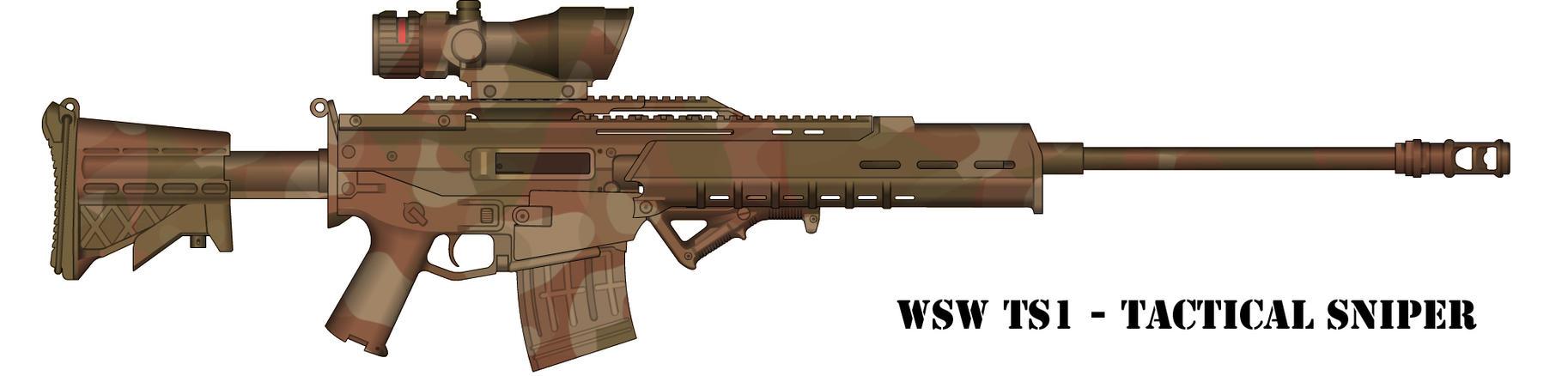 WSW TS1 by RoShinAU