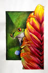 jungle frog final by maddagone