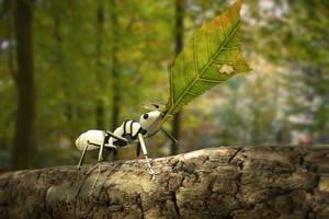 Ant by zeravla