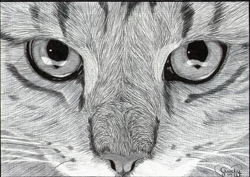 Cats eyes ballpoint by cindy r