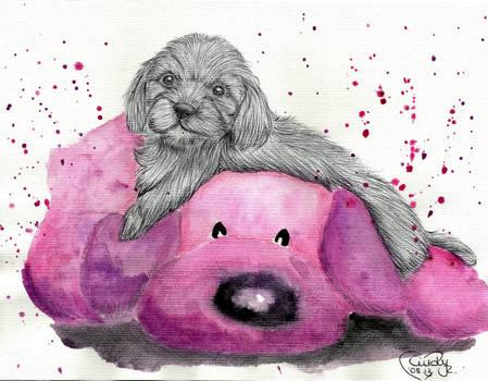 Little Puppy on pink Teddy