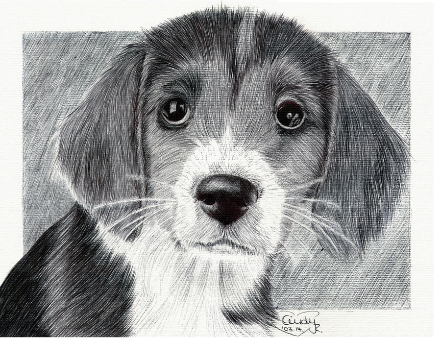 Ballpen Puppy by Cindy-R