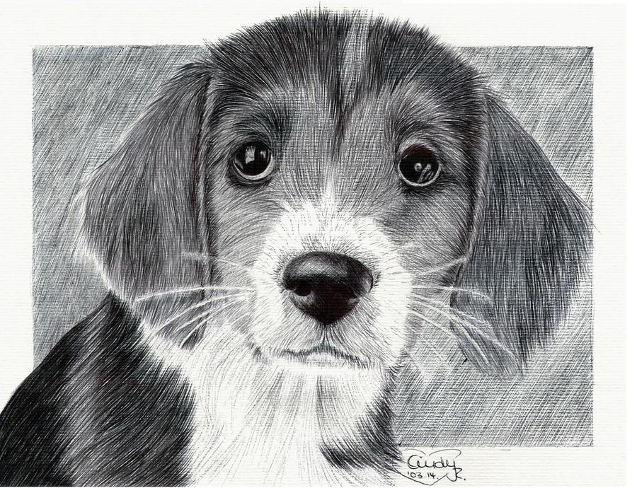 Ballpen Puppy by Cindy-R