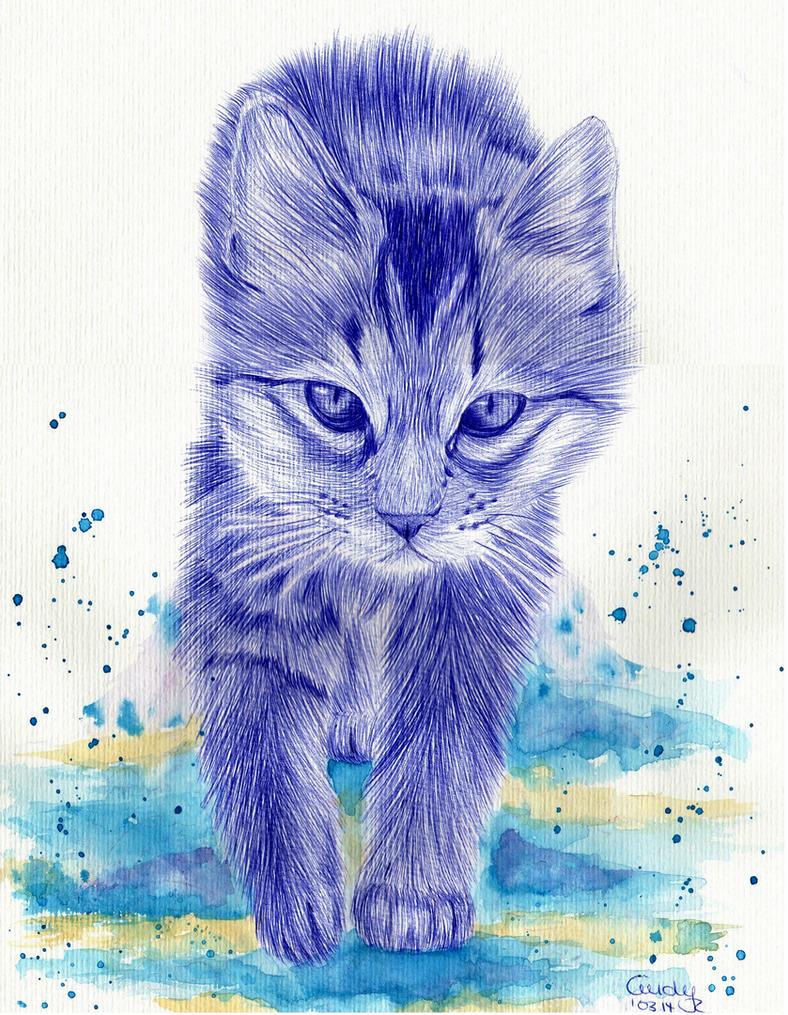 Kitten by Cindy-R
