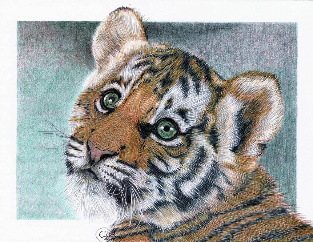 Ballpoint Baby Tiger