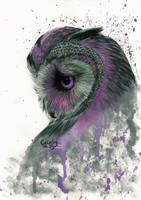 Purple Owl by Cindy-R