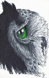 Green Eye Owl