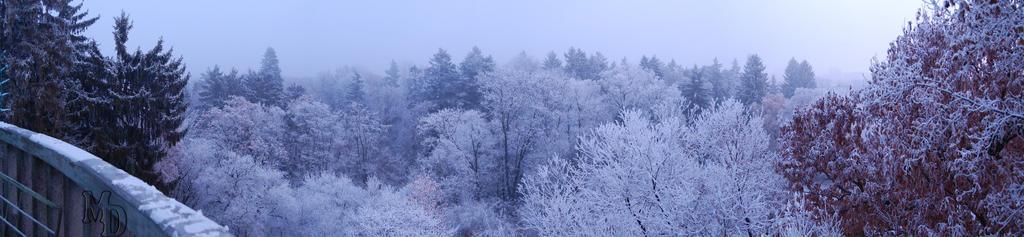 iarna-mos-nicolae