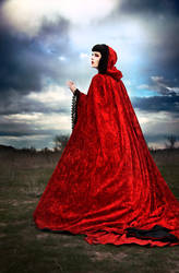 Red Riding Hood by vampireleniore