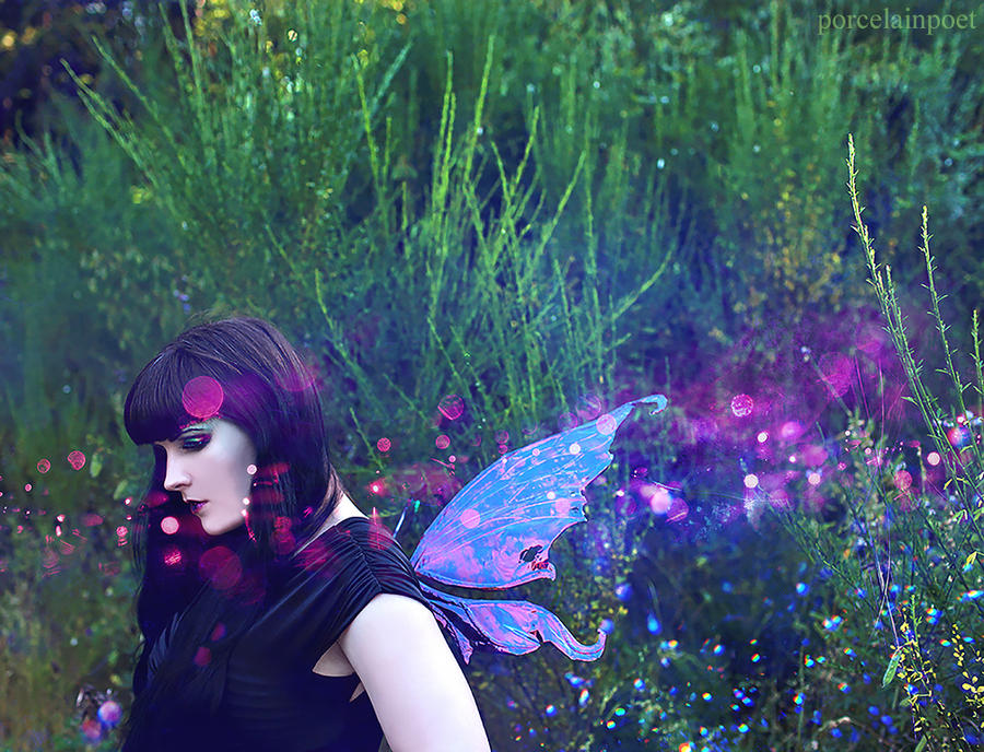 Fairy 2 by vampireleniore
