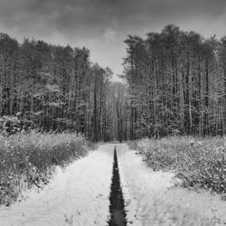 Winter in the park by hunterside