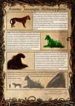 Saalair evolution