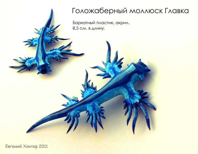 Glaucus atlanticus by hontor