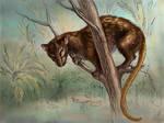 Lemur-rat