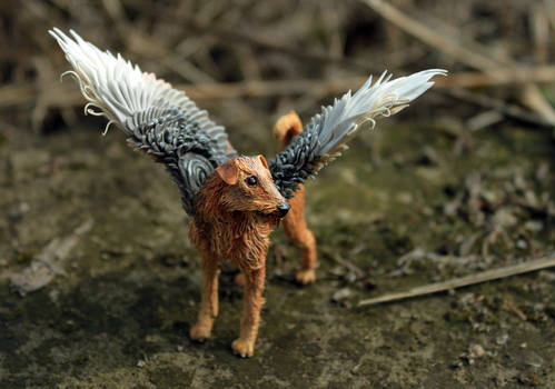 Winged Airedale