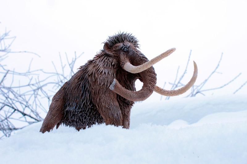 Mammoth Chronos