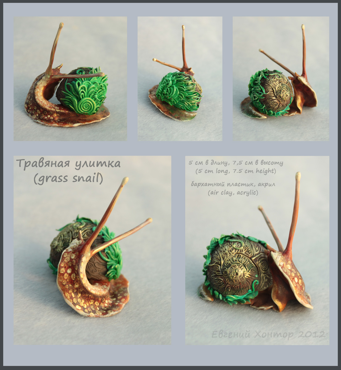 Grass snail - for sale by hontor