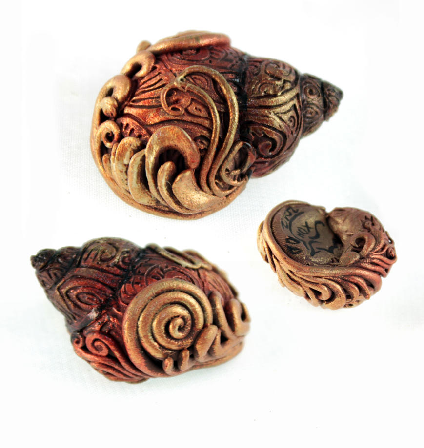 Golden shell by hontor