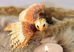 Hunting dragon Falcon