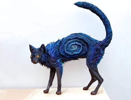 Black Galaxy Cat I