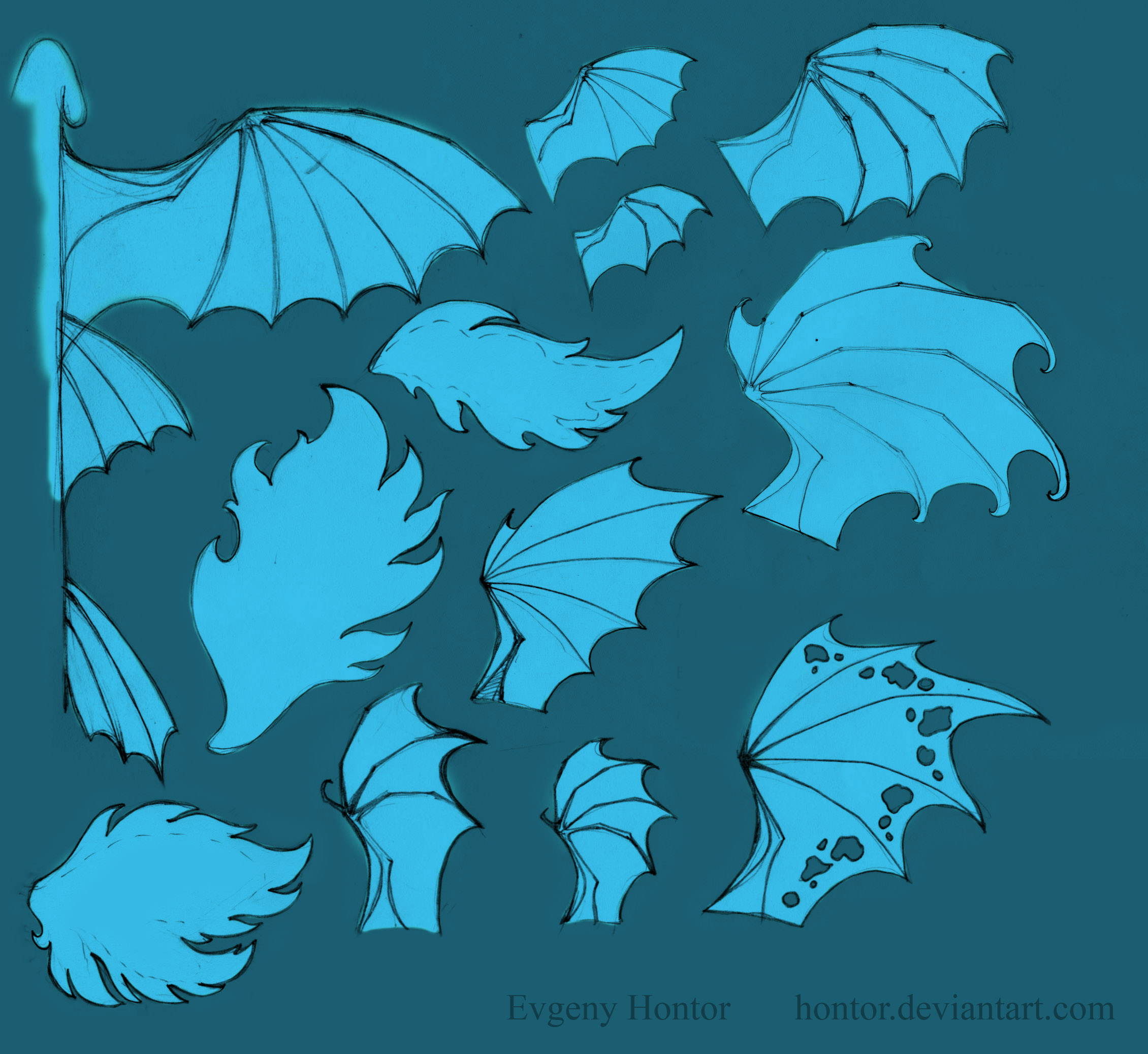 Free use dragon wings patterns by hontor on DeviantArt - photo#50
