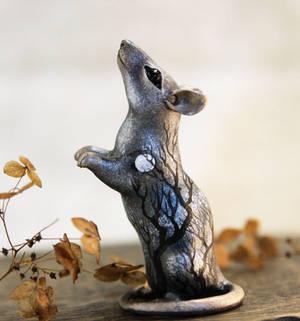 Silver rat