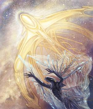 Space wings
