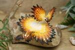 Sun butterfly dragon